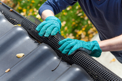 regenrinne verstopft - abflussdienst rene müller hilft
